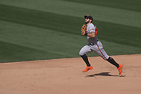 OAKLAND, CA - SEPTEMBER 19:  Evan Longoria #10 of the San Francisco Giants chases a foul ball against the Oakland Athletics during the game at the Oakland Coliseum on Saturday, September 19, 2020 in Oakland, California. (Photo by Brad Mangin)