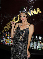 12-31-13 Anne Sayre - Dale Badway - New Years Eve -  Copacabana & Times Square