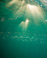 An underwater view of sunlight, streaming through the clear water of Zuma Beach, California