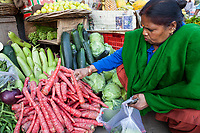 India, Dehradun.  Woman Selecting Carrots in the Market.  Note Her Nose Pin.