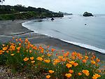 North Coast, CA. Scenics.