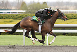 April 03, 2014: Hip 122 Giant's Causeway - Lady's Quest consigned by Wavertree Stables worked 1/8 in 10:3.  Candice Chavez/ESW/CSM