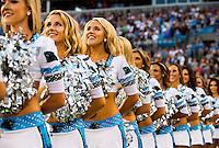 Carolina Panthers vs. New England Patriots, during their preseason NFL game at Bank of America Stadium in Charlotte, North Carolina.<br /> <br /> Charlotte Photographer: PatrickSchneiderPhoto.com