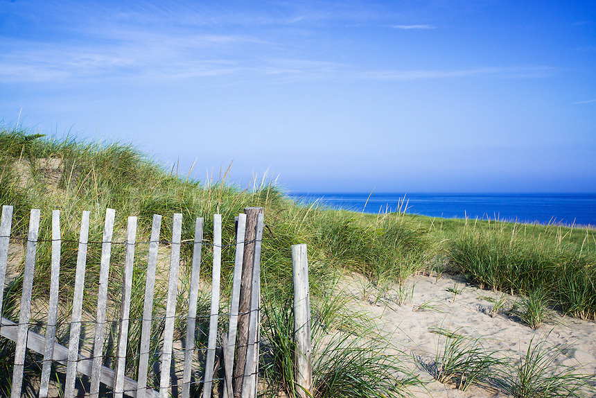 Lush dune grass leading to the ocean at Cape Cod National Seashore, Race Point Beach, Cape Cod, Massachusetts, USA