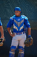 Toronto Blue Jays catcher Andres Sotillo (15) during a Minor League Spring Training game against the Philadelphia Phillies on March 29, 2019 at the Carpenter Complex in Clearwater, Florida.  (Mike Janes/Four Seam Images)