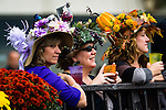 ELMONT, NY - OCTOBER 08: Photos from around the track, on Jockey Club Gold Cup Day at Belmont Park on October 8, 2016 in Elmont, New York. (Photo by Douglas DeFelice/Eclipse Sportswire/Getty Images)