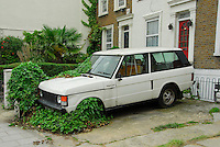 Old white Range Rover overgrown with ivy, Chiswick, London.