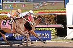 January 16, 2016: #1 Mom'z Laugh with jockey Javier Castellano  on board wins the Sunshine Millions Distaff at Gulfstream Park in Hallandale Beach, FL.  Liz Lamont/ESW/CSM