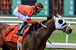 NEW ORLEANS, LA - MARCH 26: S'Maverlous #7 ridden by Jose Lezcano wins the New Orleans Handicap at Fairgrounds Race Course on March 26, 2016 in New Orleans, Louisiana. (Photo by Steve Dalmado/Eclipse Sportswire/Getty Images)