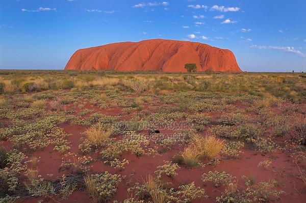 Ayers Rock at sunset, Kata Tjuta National Park, Northern Territory, Australia