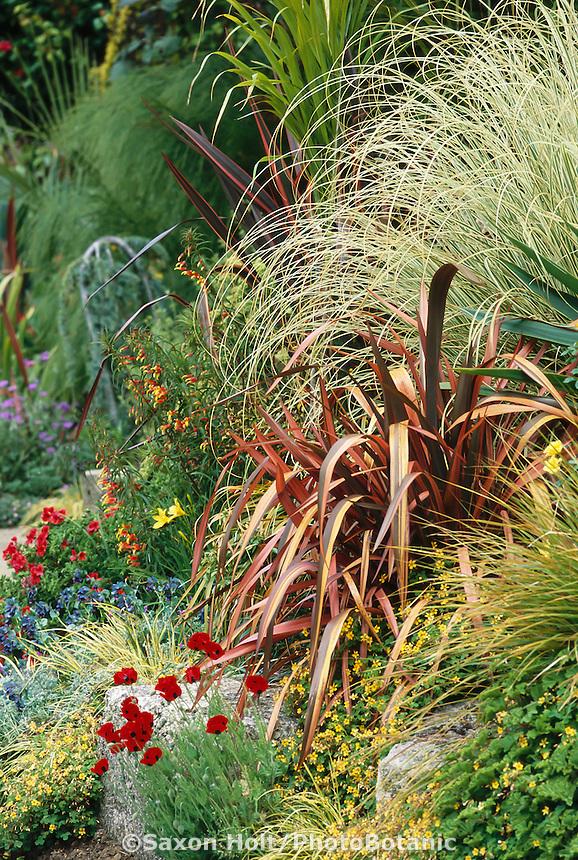 Modern mixed border with Phormium 'Guardsman' (New Zealand Flax) at public arboretum