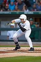 Austin Lynch (45) of the Charlotte 49ers squares to bunt against the Clemson Tigers at BB&T BallPark on March 26, 2019 in Charlotte, North Carolina. The Tigers defeated the 49ers 8-5. (Brian Westerholt/Four Seam Images)