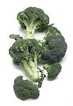 Broccoli still life.