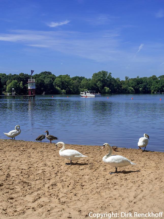 Badestrand am Maschsee, Hannover, Niedersachsen, Deutschland, Europa<br /> Beach of lake Maschsee,  Hanover, Lower Saxony, Germany, Europe