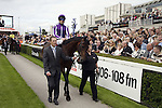 September 05, 2009: Eventual runner-up Fame and Glory paraded before the race. The Tattersalls Millions Irish Champion Stakes. Leopardstown Racecourse, Dublin, Ireland.