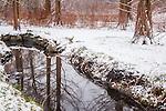 Snowy reflections at the Arnold Arboretum in the Jamaica Plain neighborhood, Boston, Massachusetts, USA