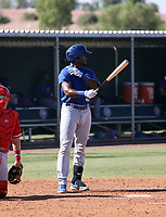 Alexander Canario - 2021 AIL Cubs (Bill Mitchell)