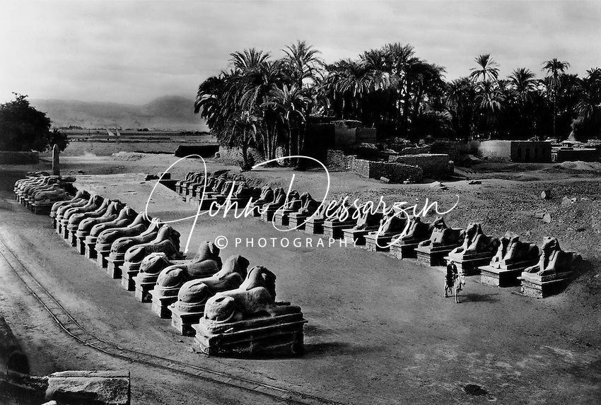 Avenue of Ram-Headed Sphinxs Karnak Luxor Eighteenth Dynasty Egypt