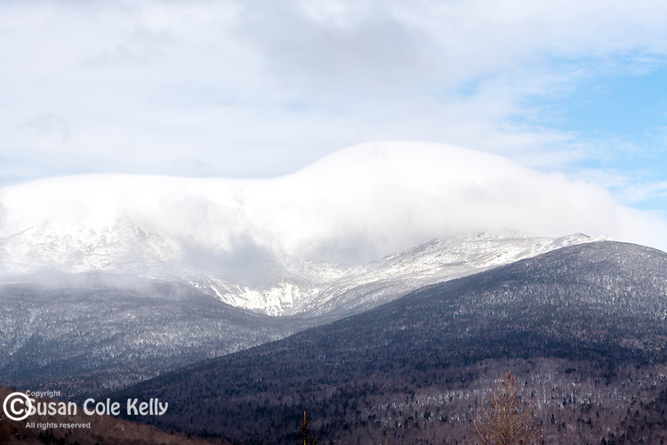 The Great Gulf near Pinkham Notch in the White Mountain National Forest, New Hampshire, USA
