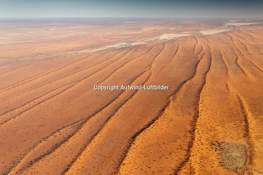 Kalahari: NAMIBIA, AFRIKA, 12.11.2019: Kalahari