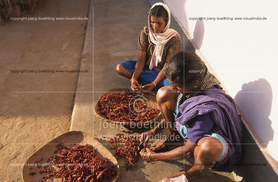 INDIA Karnataka Taccode, women crush chilies for curry preparation / INDIEN Taccode, Frauen zerkleinern Chilli Schoten fuer Curry Zubereitung