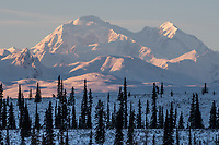 Denali from near Cantwell, Alaska.