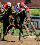 August 24, 2019 : Mind Control #6, ridden by John Velazquez, wins the H. Allen Jerkens Stakes during Travers Stakes Day at Saratoga Racecourse in Saratoga Springs, New York. Scott Serio/Eclipse Sportswire/CSM