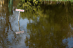 No Fishing sign in pond. The Silent Pool, near Shere Surrey Uk.