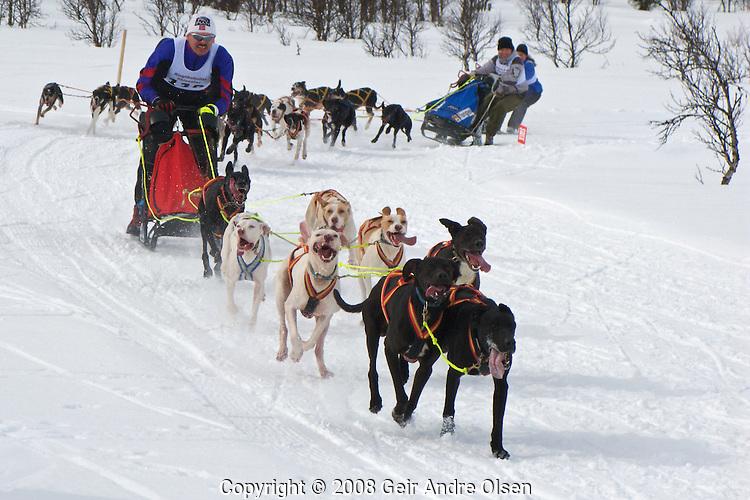 Sykkel og ski pa? GunnarbuNordic championship in dog sled racing at Venabygdsfjell, Norway April 6th 2008. Agneta Hogberg, Steinar Rye-Stang, and Erik Oksnevad  in full speed.Winner was 117 Agneta Hogberg, Sweeden
