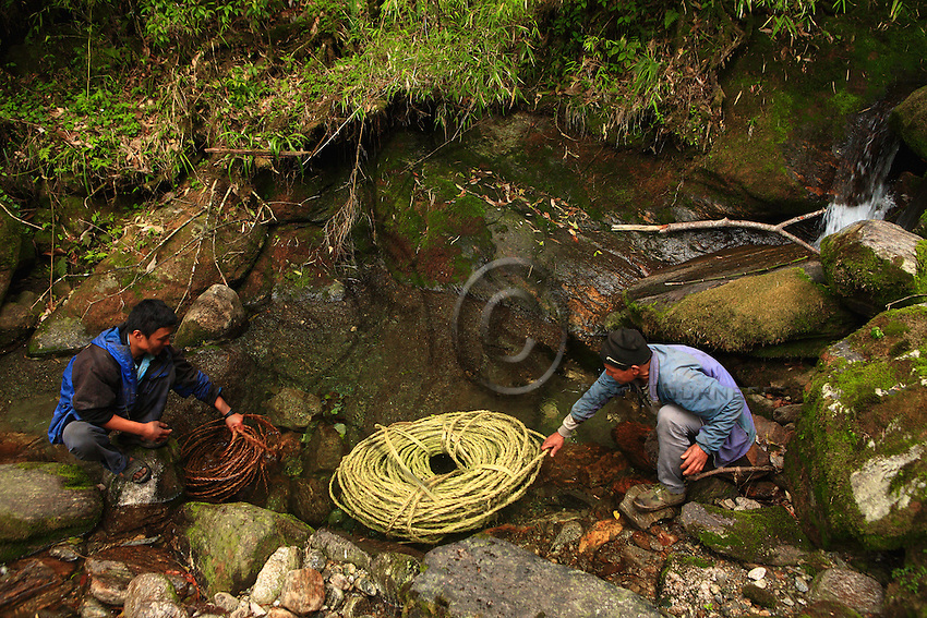 A new bamboo ladder was braided this year. To make it more flexible, the fiber is soaked in one of the many streams that irrigate the jungle.