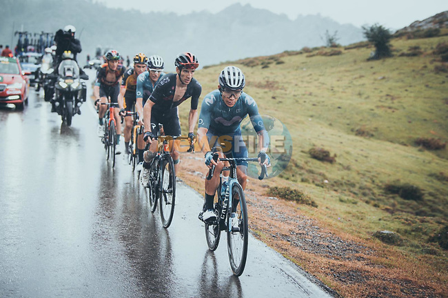 Miguel Angel Lopez Moreno (COL) leads team mate Enric Mas (ESP) Movistar Team, Adam Yates (GBR) Ineos Grenadiers and Sepp Kuss (USA) in the chase group on the final climb during Stage 17 of La Vuelta d'Espana 2021, running 185.8km from Unquera to Lagos de Covadonga, Spain. 1st September 2021.    <br /> Picture: Cxcling | Cyclefile<br /> <br /> All photos usage must carry mandatory copyright credit (© Cyclefile | Cxcling)