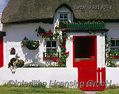 Tom Mackie, LANDSCAPES, LANDSCHAFTEN, PAISAJES, photos,+Thatched Cottage & Dog, Mooncoin, Co. Kilkenny, Ireland,6x7, building, buildings, chocolate box, color, colorful, colour, col+ourful, cottage, cottages, dog, dogs, dwelling, Eire, EU, Europa, Europe, European, home, horizontal, horizontally, horizonta+ls, house, houses, Ireland, Irish, medium format, residence, rose, roses, thatch, thatched roof, traditional, white washed++,GBTM990180-4,#l#, EVERYDAY