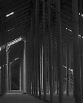 The Pole Forest<br /> <br /> Supporting Poles<br /> Murtoa Stick Shed