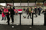 Salford City 2 FC United of Manchester 1, 15/07/2017. Moor Lane, Pre Season Friendly. A small dog belonging to FCUM fans amuses itself at half time. Salford City v FC United of Manchester in a pre season friendly at Moor Lane Salford. Photo by Paul Thompson.