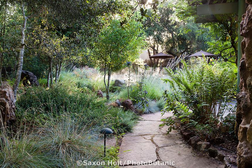 Stepping stone path through shady California native plant carbon capture meadow garden with grasses, ferns, shrubs, and Oaks - The Melissa Garden, California; Kate Frey design
