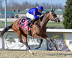 March 27, 2021: Adventuring #8, ridden by jockey Florent Geroux, wins the Bourbonette Oaks on Jeff Ruby Steaks Stakes Day at Turfway Park in Florence, Kentucky. Jessica Morgan/Eclipse Sportswire/CSM