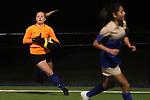 Boswell Grapevine Girls Soccer