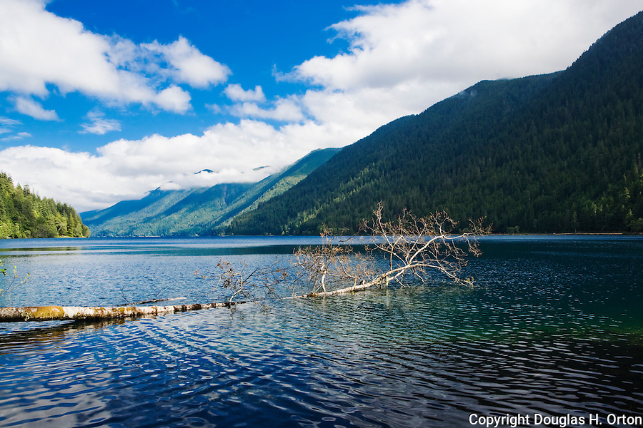 Pretty Lake Crescent, Olympic National Park, drains rainforest at the north end of the Olympic Mountains, Washington State.  Recreation opportunities include fishing, hiking, boating and camping. Olympic Peninsula