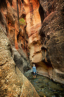 Kanarra Creek Canyon with hiker. Utah. Dixie National Forest