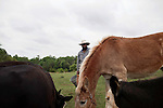 May 22, 2010. Baskerville, Virginia.. John Boyd, Jr. feeds the cattle, and mule, on his farm that has been in the family for over 100 years. . Dr. John Boyd, Jr., a Virginia farmer, has lobbied the White House and Congress for the better part of two decades on behalf of black farmers. .A $1.25 billion settlement he helped to negotiate in February for the federal government to compensate black farmers has become ensnared in Washington. .Meanwhile, many elderly farmers who stand to benefit are dying before they can seek restitution..Their case, known as the black farmers settlement, and commonly referred to as Pigford II, is the second phase of a federal lawsuit settled in 1999. It covers more than 80,000 farmers who claim they were denied critical aid comparable to what white farmers received from the Department of Agriculture between 1981 and 1996 because of the color of their skin..Congress reopened the case in 2008, and set aside $100 million to address the late claims. President Barack Obama, who co-sponsored the 2008 measure when he was in the Senate, created a $1.15 billion line item in his budget for the 2010 fiscal year to cover the new class of litigants..The money was less than half of the $2.5 billion the farmers had fought for, but the administration's promise of a quick resolution prompted them to accept the deal.  .