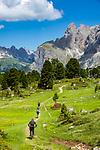 Italy, South Tyrol (Trentino - Alto Adige), Dolomites, near Selva di Val Gardena: Mountainbiker with Sella Group at Sella Pass Road, at background Gruppo del Cir mountains   Italien, Suedtirol (Trentino - Alto Adige), oberhalb von Wolkenstein in Groeden: Mountainbiker vor der Sellagruppe an der Sella-Joch-Passstrasse, im Hintergrund die Cir-Spitzen