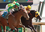 September 06, 2014: Keen Ice and jockey Miguel Mena (outside horse) win the 2nd race, Maiden for 2 year old colts, over #4 Starbound and #8 Tiznow R J at Churchill Downs.   Candice Chavez/ESW/CSM