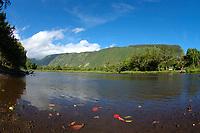 Waipio valley The Big Island of Hawaii, Pacific Ocean