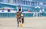 August 31, 2020: King Guillermo exercises as horses prepare for the 2020 Kentucky Derby and Kentucky Oaks at Churchill Downs in Louisville, Kentucky. The race is being run without fans due to the coronavirus pandemic that has gripped the world and nation for much of the year. Scott Serio/Eclipse Sportswire/CSM