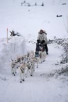 Jim Lanier Runs Up Bank Of Yukon to Galena Checkpoint<br /> 2004 Iditarod