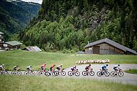 a herd of locals checking out the breakaway group up the Col des Aravis (2Cat/1498m/6.7km@7%)<br /> <br /> 73rd Critérium du Dauphiné 2021 (2.UWT)<br /> Stage 8 (Final) from La Léchère-Les-Bains to Les Gets (147km)<br /> <br /> ©kramon