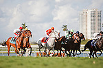 Tapitsfly(7) with jockey Julen Leparoux up go by the wire for the first time in the Honey Fox Stakes(G2T) at Gulfstream Park. Hallandale Beach, Florida. 03-18-2012