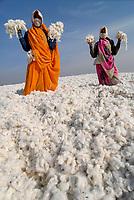 INDIA Madhya Pradesh , biodynamic organic cotton project bioRe in Kasrawad , storage for harvested raw cotton at ginning factory / INDIEN Madhya Pradesh , Lagerplatz und Entkernungsfabrik der bioRe India , Projekt fuer biodynamischen Anbau von Biobaumwolle in Kasrawad