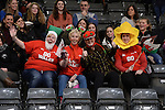 Wales fans prior to kick off <br /> <br /> Swansea University International Netball Test Series: Wales v New Zealand<br /> Ice Arena Wales<br /> 08.02.17<br /> ©Ian Cook - Sportingwales