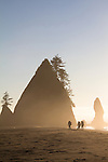 Olympic National Park, Shi Shi Beach, Point of the Arches, hikers, Olympic Coast National Reserve, Washington State, Pacific Ocean, Pacific Northwest, U.S.A.,